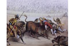 ¿Por qué los toreros evitan usar trajes de color amarillo?