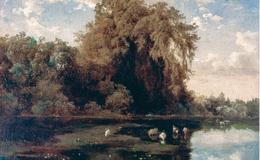 El ahuehuete, un árbol popular que se convirtió en símbolo nacional