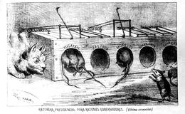 """""""Ratonera presidencial para ratones gobernadores"""""""