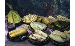 De los rellenos y sabores de los tamales