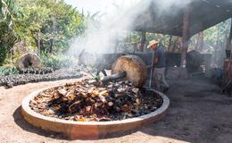 La producción de mezcal en Oaxaca