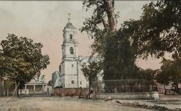 Calzada de Tlacopan, Popotla y el árbol de la Noche Triste