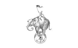 ¿Sabían que una sorprendente elefanta llegó de Asia a Nueva España en 1800?