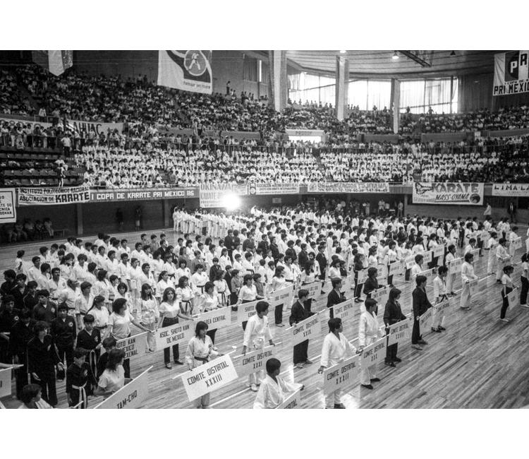 Una historia del karate en México
