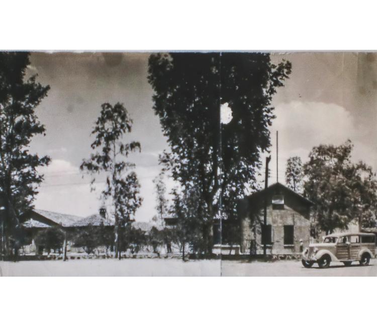 Los japoneses en Navojoa