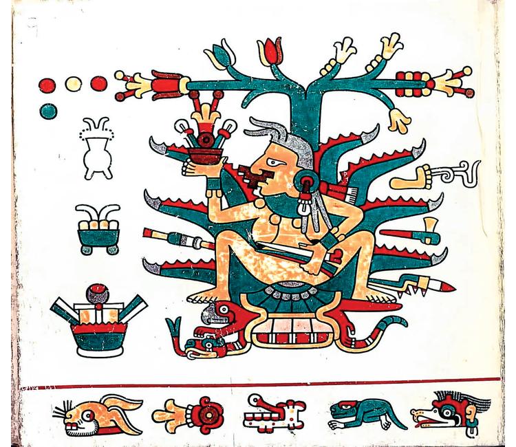 Mayahuel no es la diosa del maguey