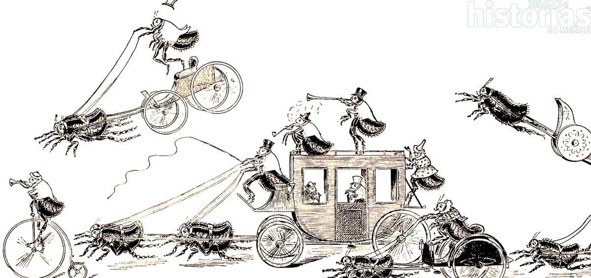 ¿Sabían que en en México hubo asombrosos circos de pulgas?