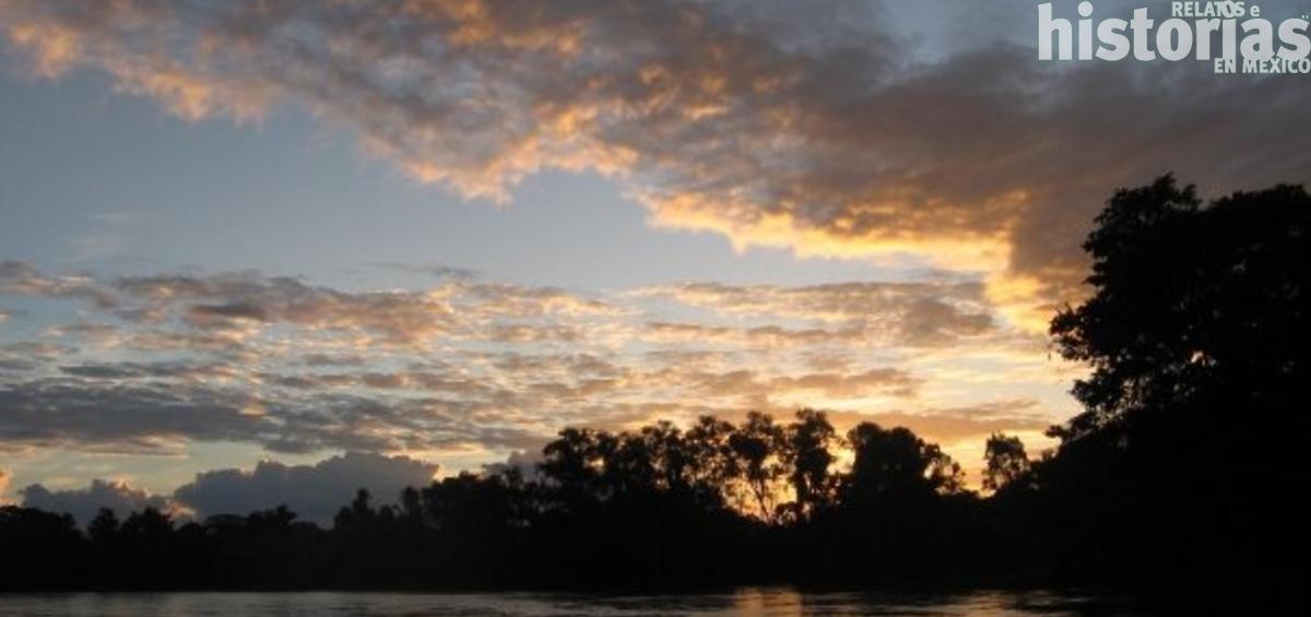 Documental sobre la selva lacandona